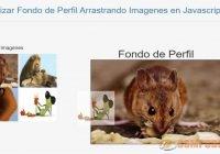 Actualizar Fondo de Perfil Arrastrando Imagenes en Javascript